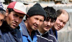 migrant stavropol